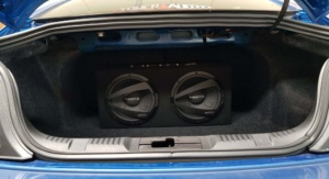 Mustang Subwoofers